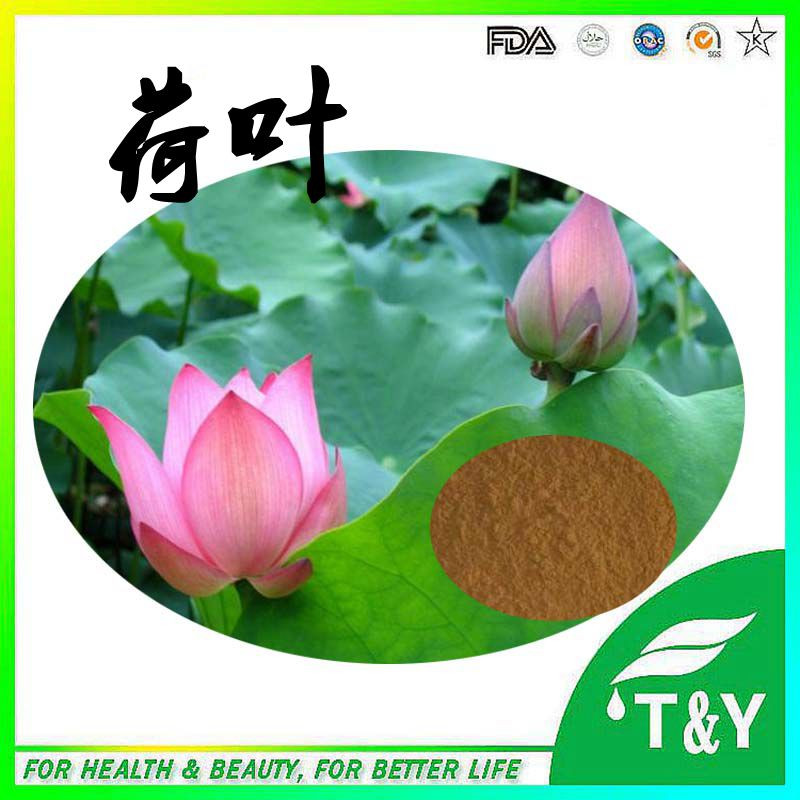 2016 New Arrival Lotus Leaf Extract <br><br>Aliexpress