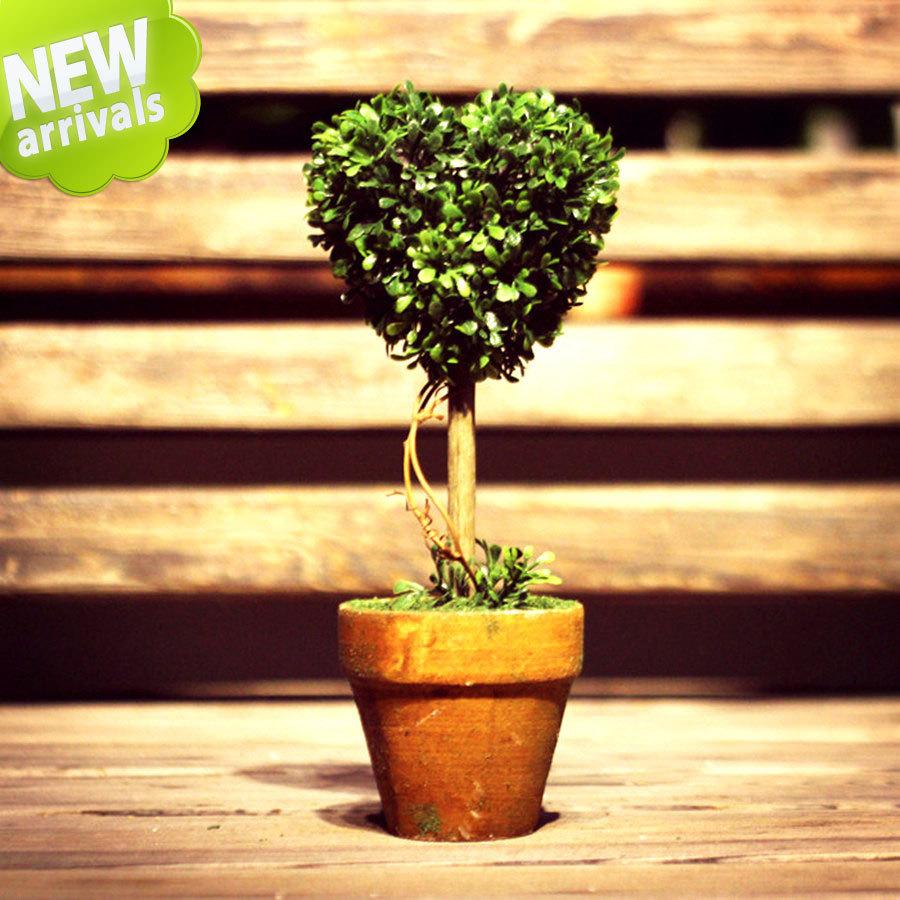 artesanato mini jardim:Casamento. Jardim plantas artificial topiary árvore, Mini artesanato
