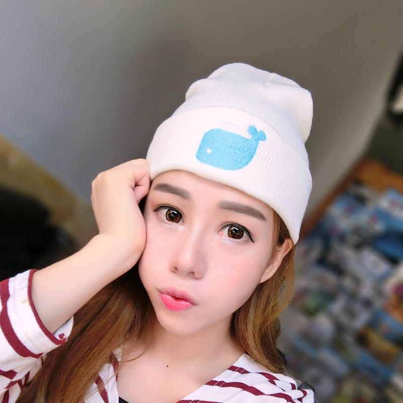 Women New Design Caps Dolphin Pattern Women Winter Hats Knitted Sweater Fashion Beanies Girl Crochet gorro(China (Mainland))