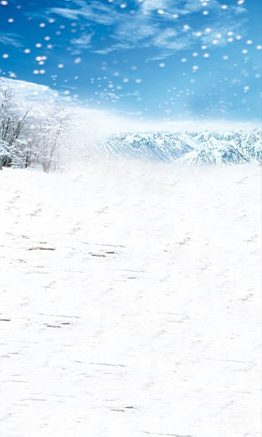 New arrival Background fundo snow 600CM*300CM width backgrounds LK 2479<br><br>Aliexpress