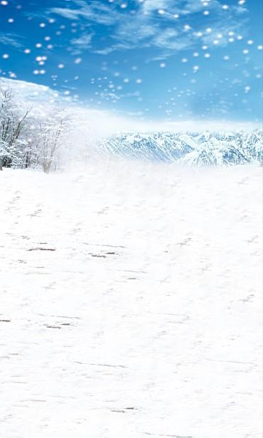 Здесь можно купить  New arrival Background fundo snow 600CM*300CM width backgrounds LK 2479  Бытовая электроника