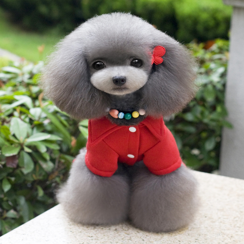 New autumn winter fashion 1959 Eagle pet sweater dog clothes pet clothing accessories punk Teddy puppy Dog Jumpsuits & Rompers(China (Mainland))