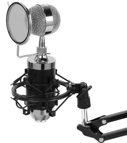 Free shipping baby bottle style studio recording computer broadcast condenser microphone with real Diaphragm(China (Mainland))