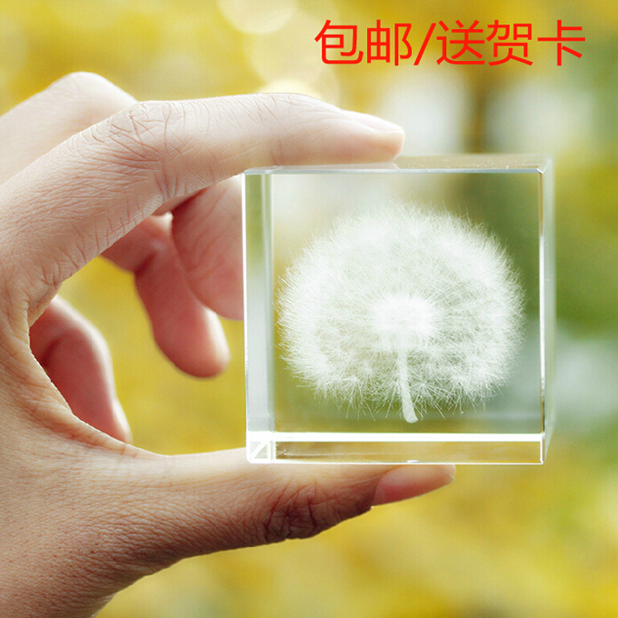Dandelion Specimens Birthday Gift Ideas For Business Gifts