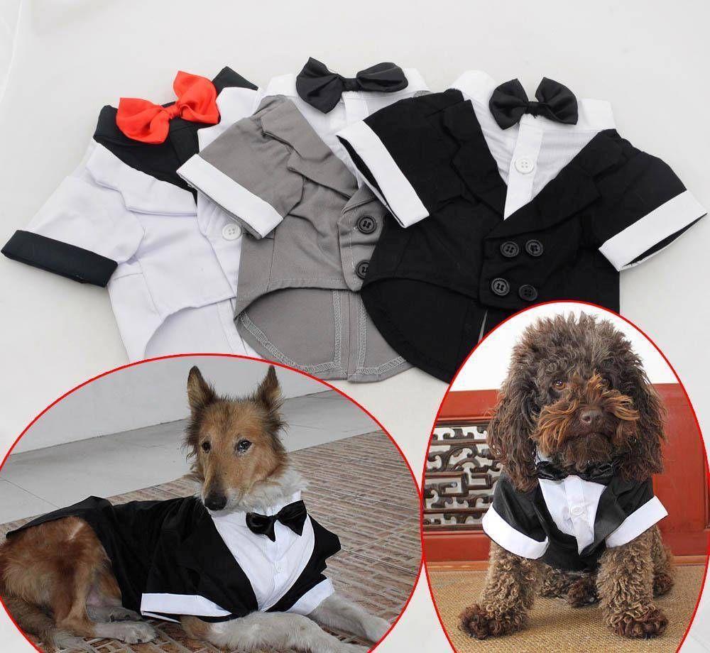 Retail 2015 NEW Pet Clothing Small Large Big Dog Wedding Costume Western tuxedo Jacket W Bow tie(China (Mainland))
