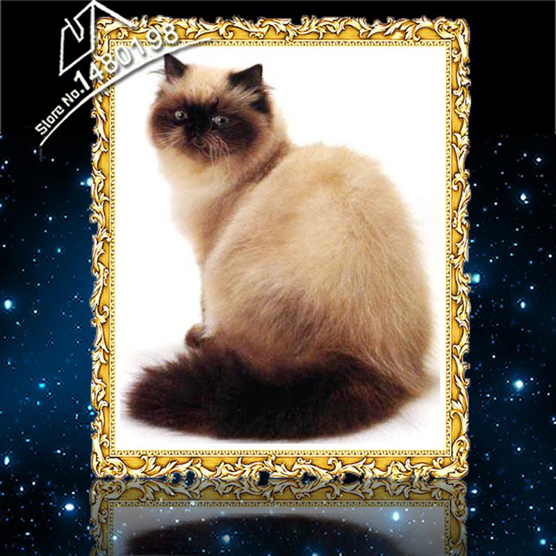 Top Grade Diamond Painting CAT Needlework Knittings Mosaic Pet Picture of Rhinestones Animal Series Crystal DIY Paintings(China (Mainland))