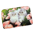 High Grade Lovely Cats Soft Flannel Floor Mat Porch Bathroom Bedroom Anti Slip Carpet Kitchen Living