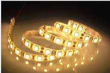 DC12V IP65 Waterproof Flexible Light LED EL Products Strip 5050,Warm White 60LEDs/m 5m/lot.(China (Mainland))