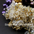High Quality Purple Pearl Fashion Costume Crystal Jewelry Beaded Necklace