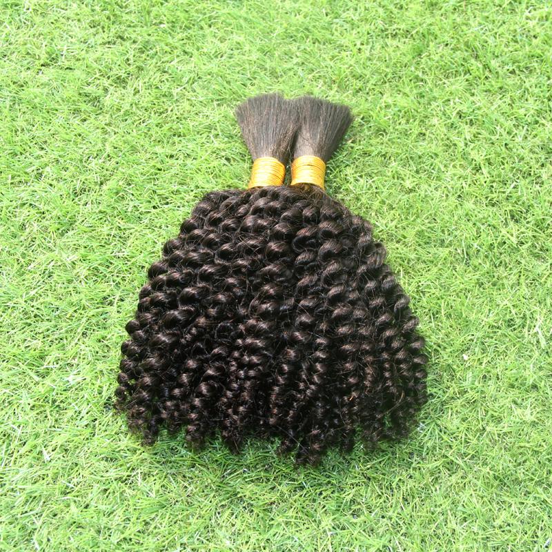 Online Sales No Weft Human Bulk For Braiding Hair 100g Braiding Hair Bulk Loose Hair Bulk Afro Kinky Curly Braiding Hair