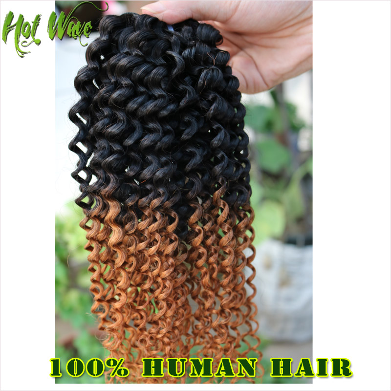 Brazilian Virgin Hair 6A Afro Kinky Curly Ombre Hair Extensions Brazilian Ombre 1 pic  Human Hair Curly Rosa Hair Products<br><br>Aliexpress