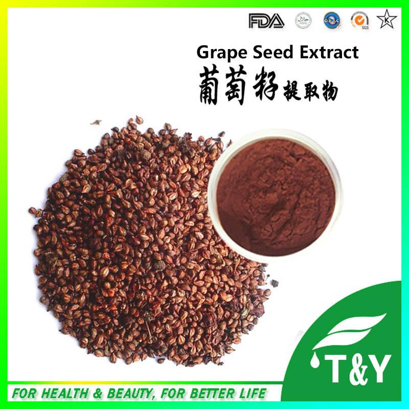 100% Natural 95% OPC Grape Seed P.E. improve immunization 600g/lot 20:1<br><br>Aliexpress