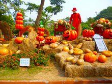 200cm*300cm(6.5x10ft) photo studio background Pumpkin scarecrow pumpkins halloween backgrounds ZJ