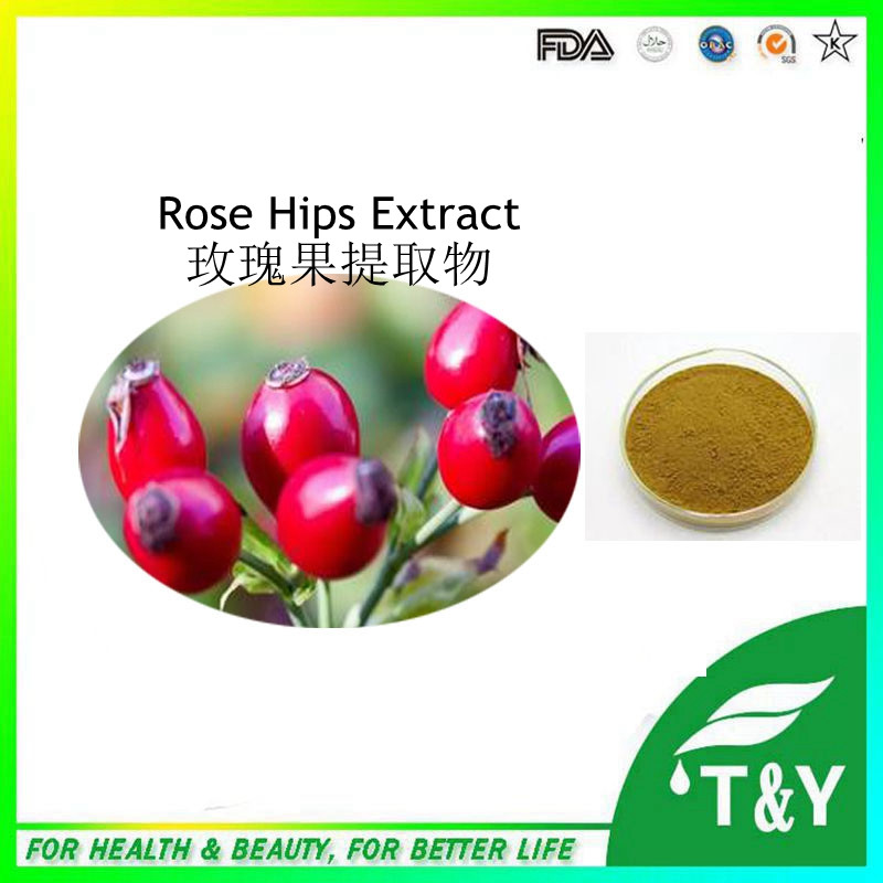 Hot sale! high quality natural VC rose hip extract 800g/lot