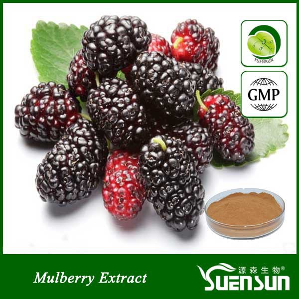 Organic mulberry extract powder mulberry powder Mulberry fruit powder 1kg