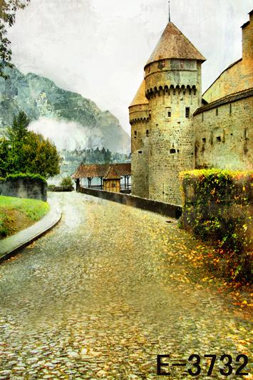 Fantasy vinyl 10x20ft scenic Studio photography digital props backgrounds E-3732 backdropsold castle for photos<br><br>Aliexpress