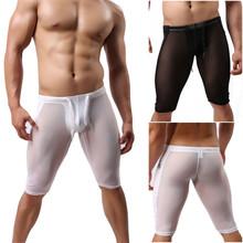 Men's underwear transparent nylon silk gauze pants fitness pants Shorts  New arrive 2 color fashion shape excellent quality(China (Mainland))