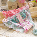Women Underwear Sexy G String Women Low Waist Briefs Underwear Sexy Hipster Lace Pink Floral Thong