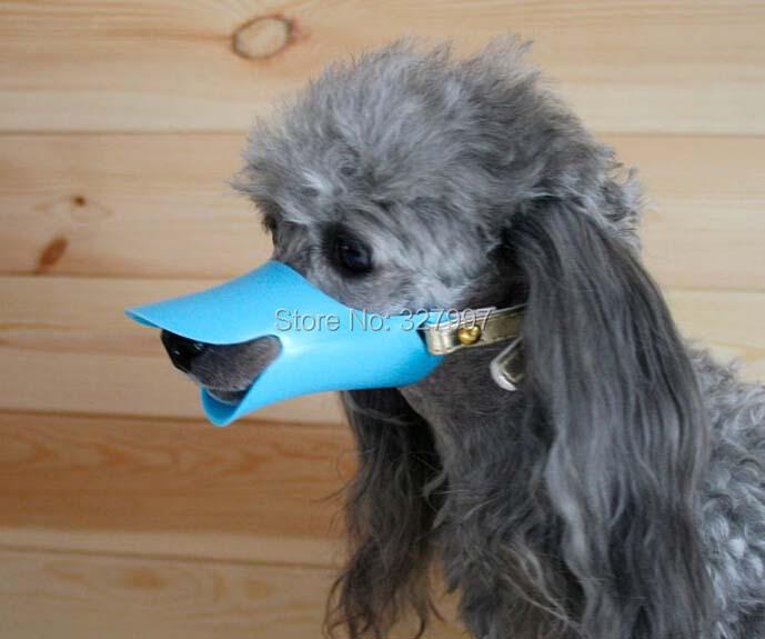 Duck Dog Muzzle Anti Bite / Bark collar small breed pet baby no barking(China (Mainland))