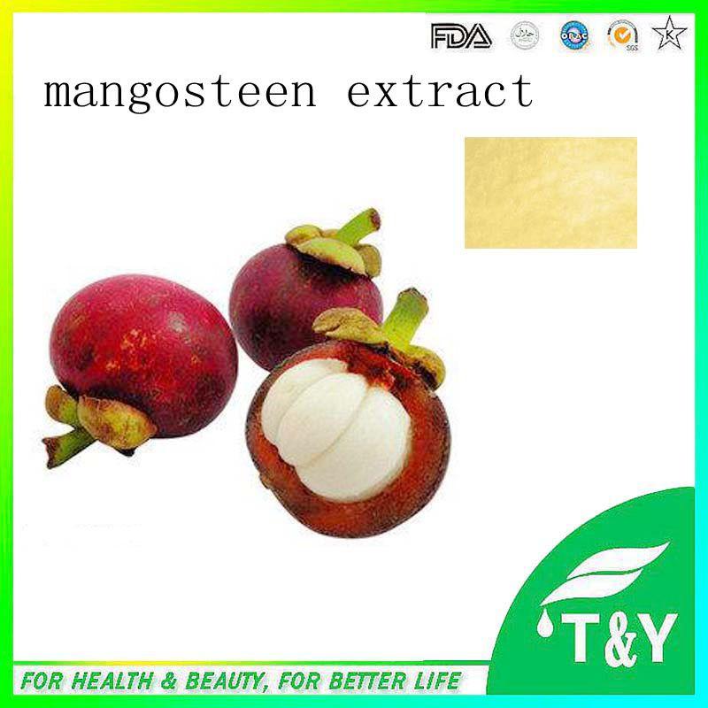 online kaufen gro handel frische mangostan aus china frische mangostan gro h ndler. Black Bedroom Furniture Sets. Home Design Ideas