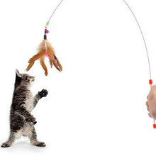 Creative Random Colored Feathers Funny Cats Wire Rods Flying Bell Favorite Cats Toy For Pet Products #79931(China (Mainland))
