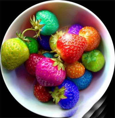 Wholesale Fruit Seeds Rainbow Strawberry Seeds Fruit Multi-Color 200 seed/bag(China (Mainland))