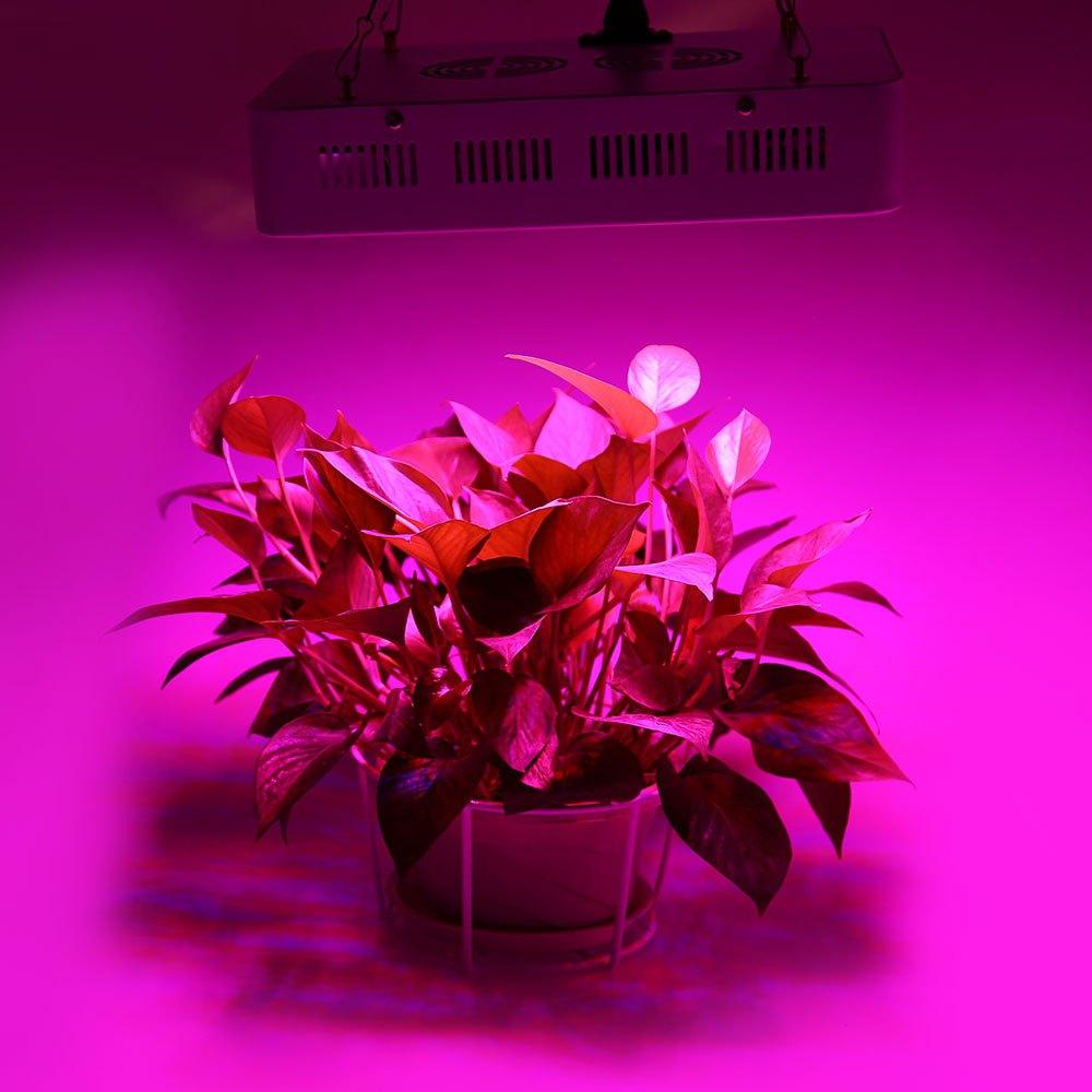 Compra 200 vatios crece la luz online al por mayor de - Luces para plantas de interior ...