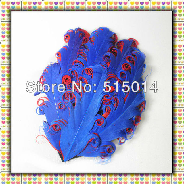 Wholesale !Free Shipping+Mixed Color +Top Quality  Curly Goose Feather Pad ,Nagorie Feather Pad