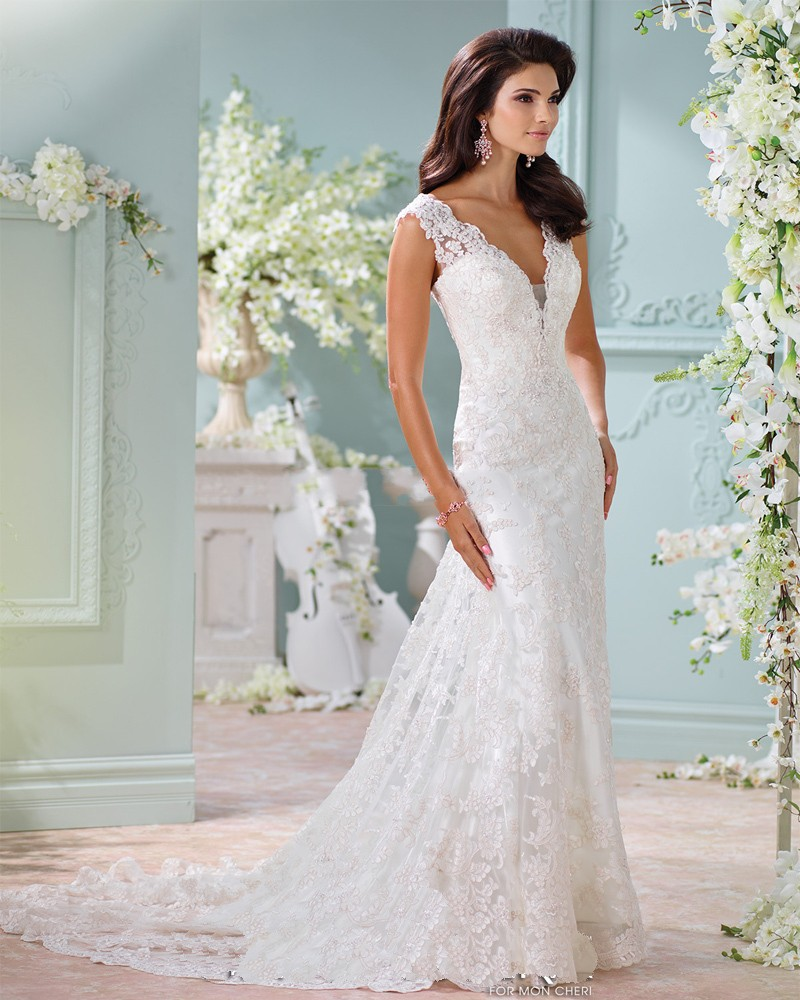Wedding dresses lace see through dreamy design wedding for See through lace wedding dress