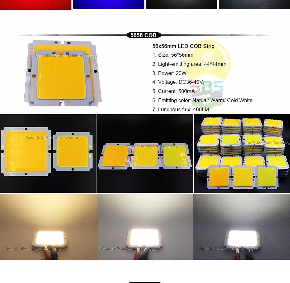 DC Bulb 1W 5W 10W 20W 50W COB LED Strip Lamp Light Blue Red White Lighting Source for DIY LED Matrix Chip On Board Bar Lights (4)