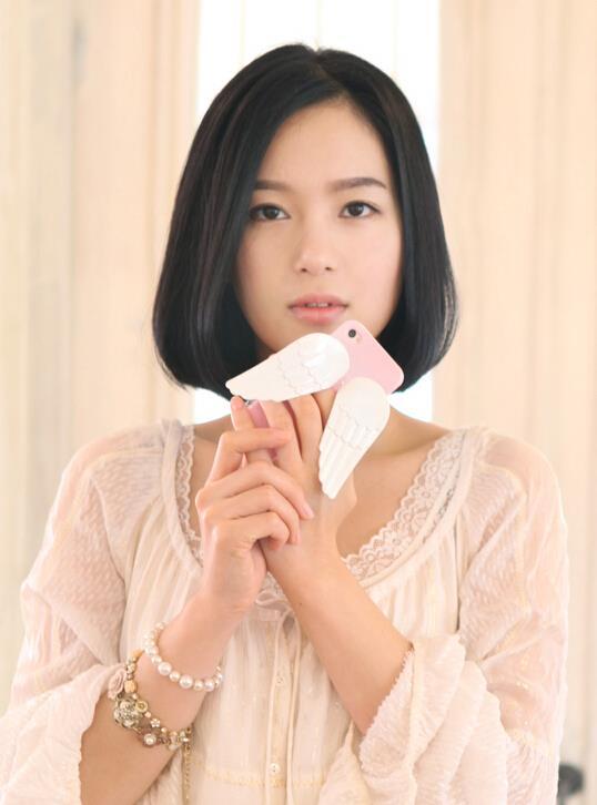 ANGELA Angel Wings ip5 / 5s phone shell protective cover TPU ip4(China (Mainland))