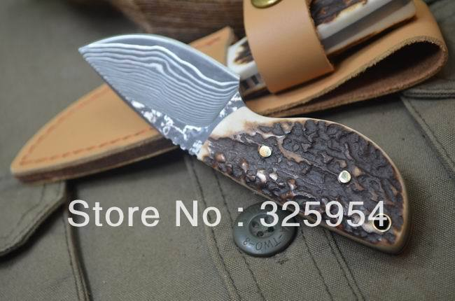 Top Quality Small Fixed Damascus Knife With Deer Horn Handle Boker Mini Knives