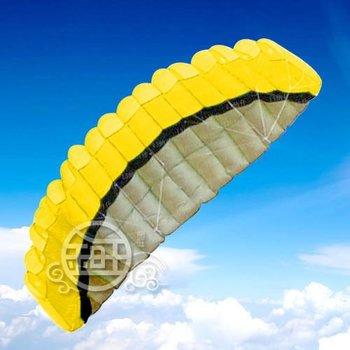 2011 NEW 2.5 m 2 Line Stunt Parafoil POWER Sport Kite B