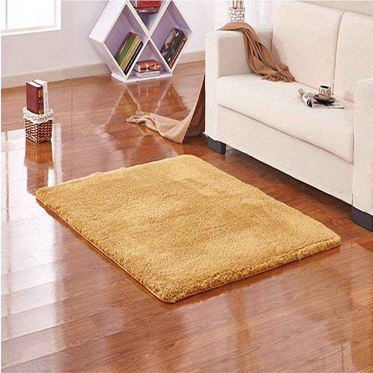 SV Micro Plush Super Soft Carpets Solid Color Area Rugs Thick Indoor Outdoor Mats Living