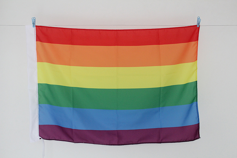 Digital Printed 100% Polyester Rainbow flag,Homosexuality gay Flying flag Size 192*288cm(6.3x9.45ft)banner without flagpole(China (Mainland))