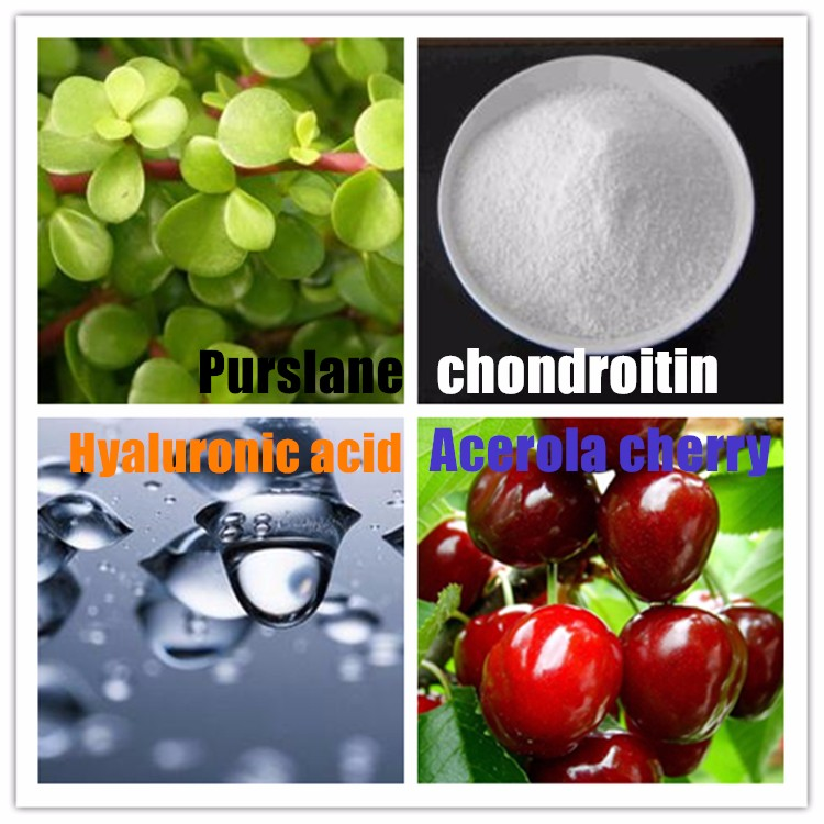3 pc Zhongke Cartilage-care Capsule purslane, Chondroitin, Hyaluronic acid,Acerola cherry good for bone health care cheap