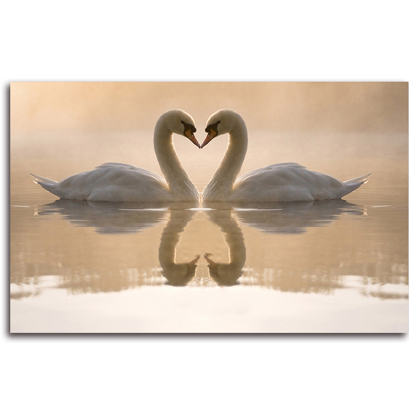 Swans Diamond embroidery animal DIY Canvas For Embroidery Picture Of Rhinestones Handcraft Diamond Mosaic Cross-Stitch Kits Sale(China (Mainland))