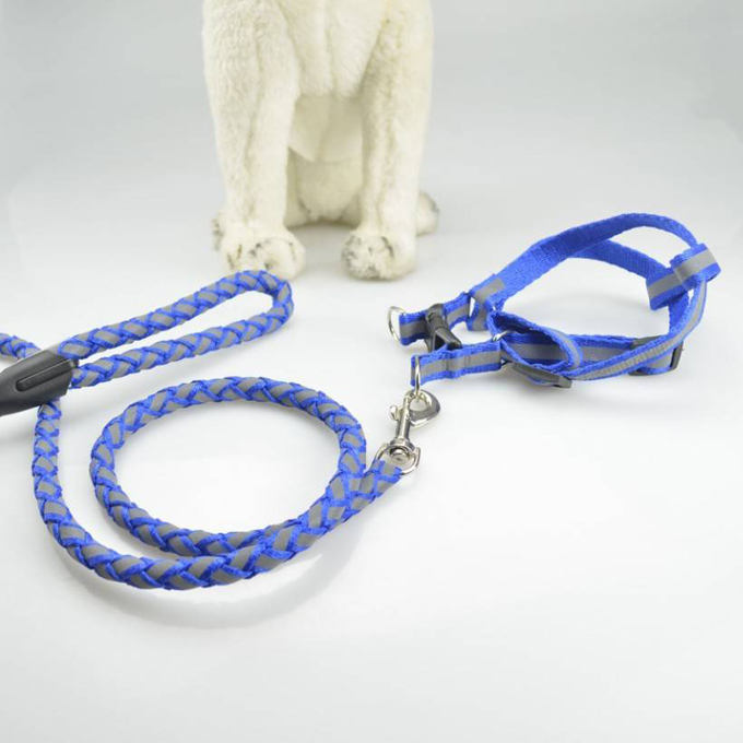 Pet Dog Leash Rope with Collar & Chest Round Light Glowing Reflective String Special Pet Supplies Dog Harness Belt Combo Kit(China (Mainland))