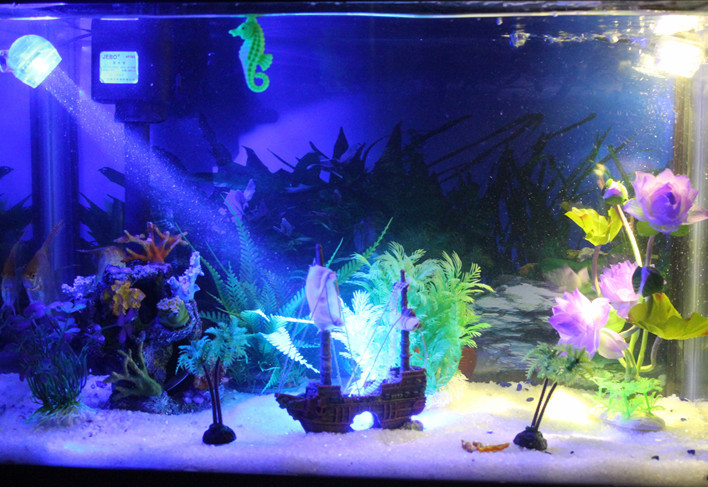 Fish tank aquarium landscaping background design packages for Fish tank pirate ship