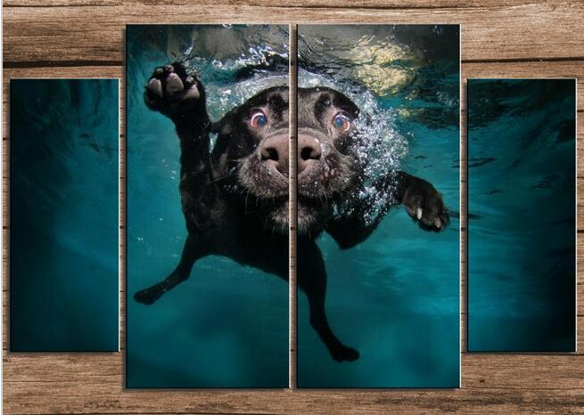 Swimming dog Animal Modern oil Painting Drawing art picture picture(China (Mainland))