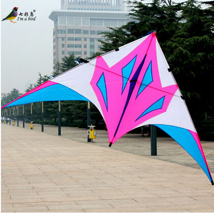 Free Shipping New Toys Hot 2.8m Quality Goods Power Triangle Kite With Handle and String Good Flying(China (Mainland))