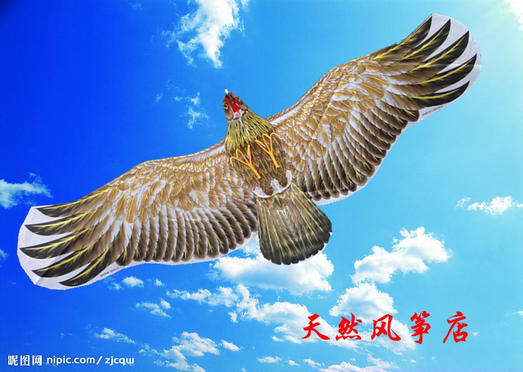 2016 new beautiful 3d bird outdoor games kiting storm eagle stunt kites for sale large Weifang kite traditional flying toys bar(China (Mainland))