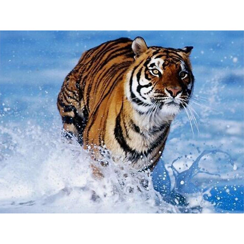running tiger Diamond embroidery Paintings Rhinestone Pasted 3D Diamond painting Animal diamond mosaic 80x60cm RMD044