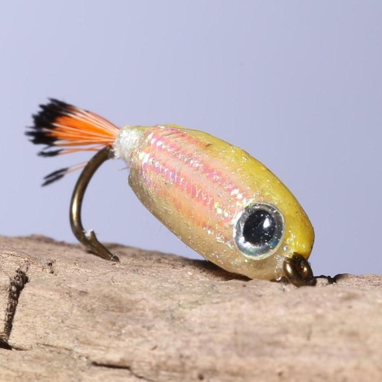 Resin coated fish type fly fishing lures wet fishing flies for Is a fish wet