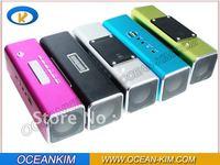 Portable Mini Speaker With FM Radio & USB Input TT2B-001