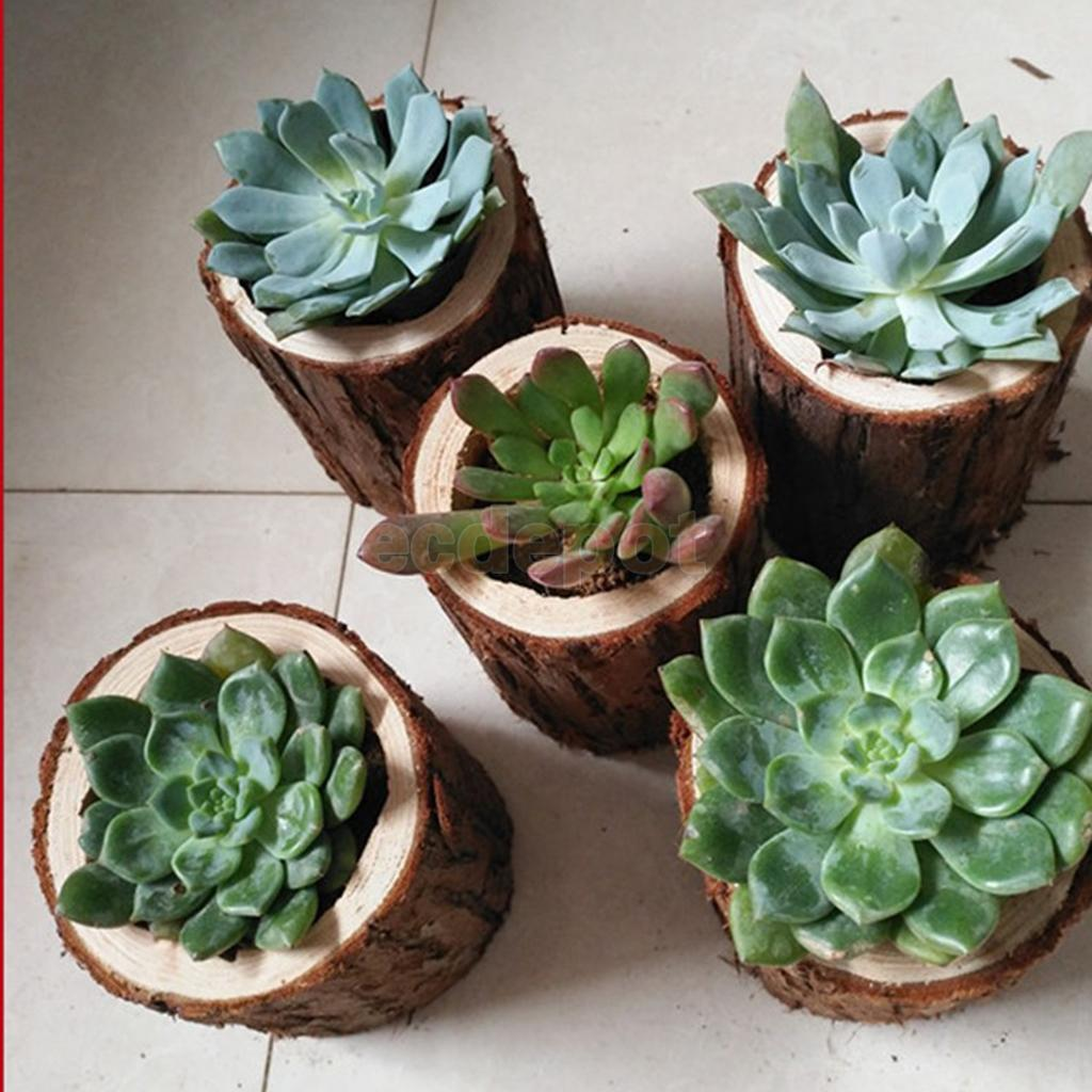 Rustic Tree Stump Wooden Flower Vase Succulent Plants Bonsai Flowerpot Light Candle Holder