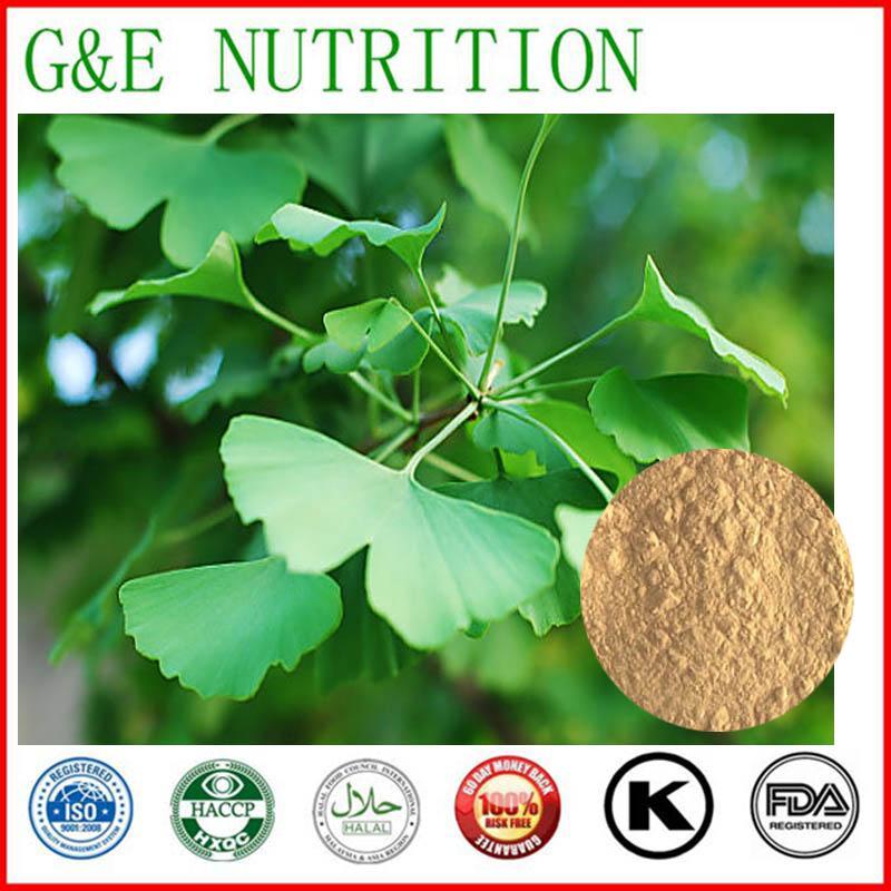 100% natural Ginkgo biloba Extract / ginkgo biloba extract powder / ginkgo biloba leaf extract 700g