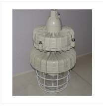 BAD59 maintenance explosion-proof lamp (IIC)(China (Mainland))