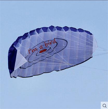 Free Shipping Outdoor Fun Sports Power Dual Line Stunt Parafoil Parachute Rainbow Sports Beach Kite For Beginner(China (Mainland))