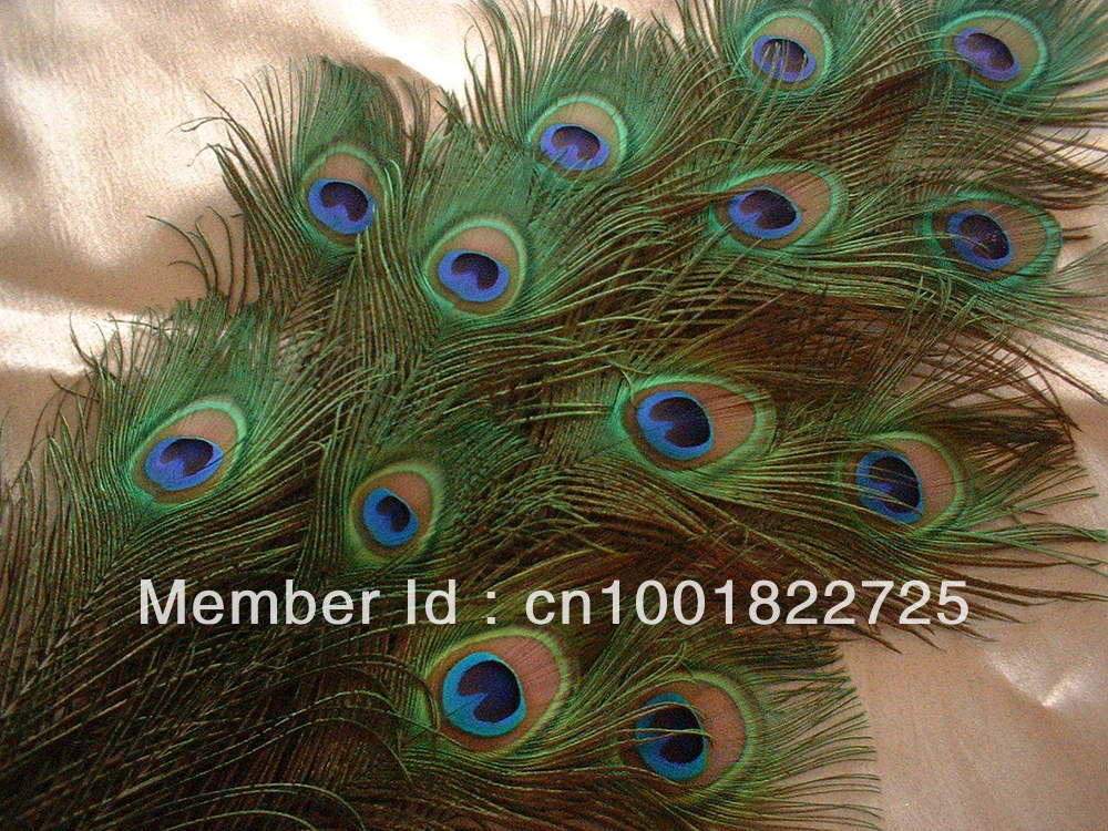 Top quality peacock feather,100pcs/lot, length about 30 cm,beautiful natural peacock feather(China (Mainland))
